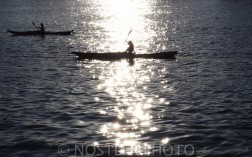 Rowing at Amager Strandpark